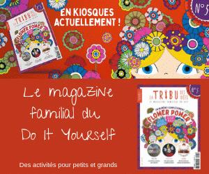 La Tribu des Idées – Abonnement magazine – 300*250